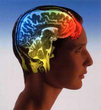 Neurochip acts as a second motor cortex