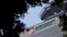 Gobierno mexicano invita a firmas extranjeras a participar en licitación nueva refinería
