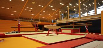 Collegiate gymnast, 20, dies days after training accident