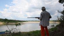 Schildkröten-Population am Amazonas erholt sich