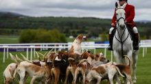 Brexit: All bets are off for Irish horse racing industry
