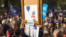 People's Vote march: All the most eye-catching placards from huge anti-Brexit demonstration in London
