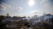 Brazil's Bolsonaro authorises army to help fight Amazon fires