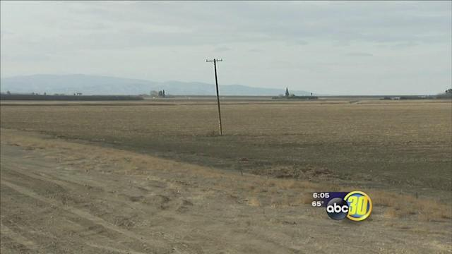 Drought forcing growers to give up on some crops