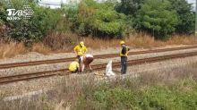 又出包!斷軌19公分 綠委:台鐵還有沒有救