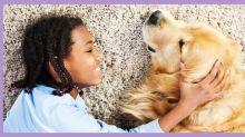 Veterinarios aseguran que esta es la mejor forma de adoptar un perro si se tienen hijos