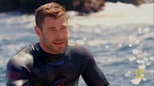 The 'incredible' moment Chris Hemsworth came face-to-face with a grey nurse shark