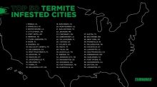 Terminix Announces Its List of the Top 50 Most Termite-Infested Cities