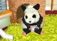 Nintendogs paves way for hamsters?