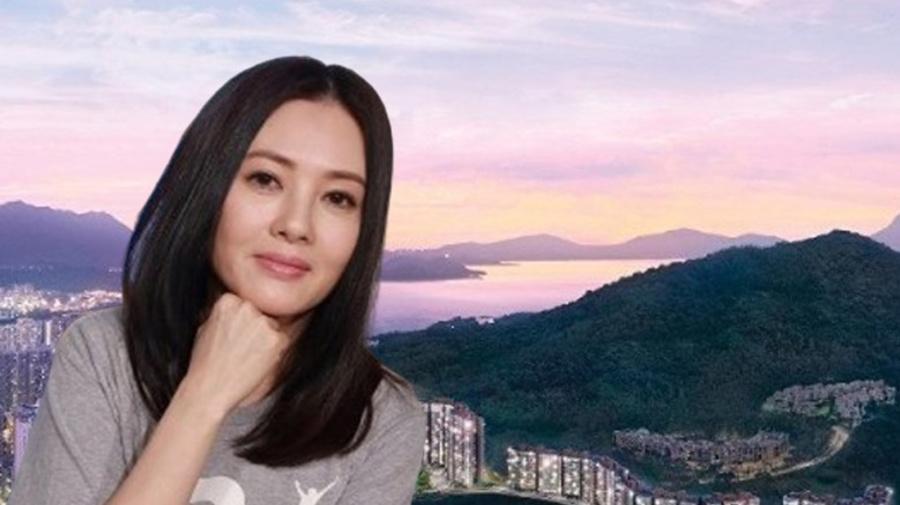 李麗珍985萬買大埔天鑽頂層特色單位
