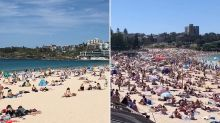 'Make other plans': Beaches hit capacity as huge crowds prompt concern