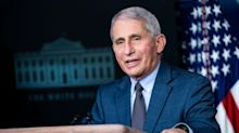 Fauci says there's 'no doubt we have been undercounting' the number of people who died from COVID-19