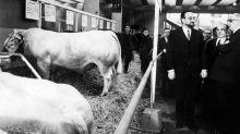 Salon de l'agriculture : le bal des politiques