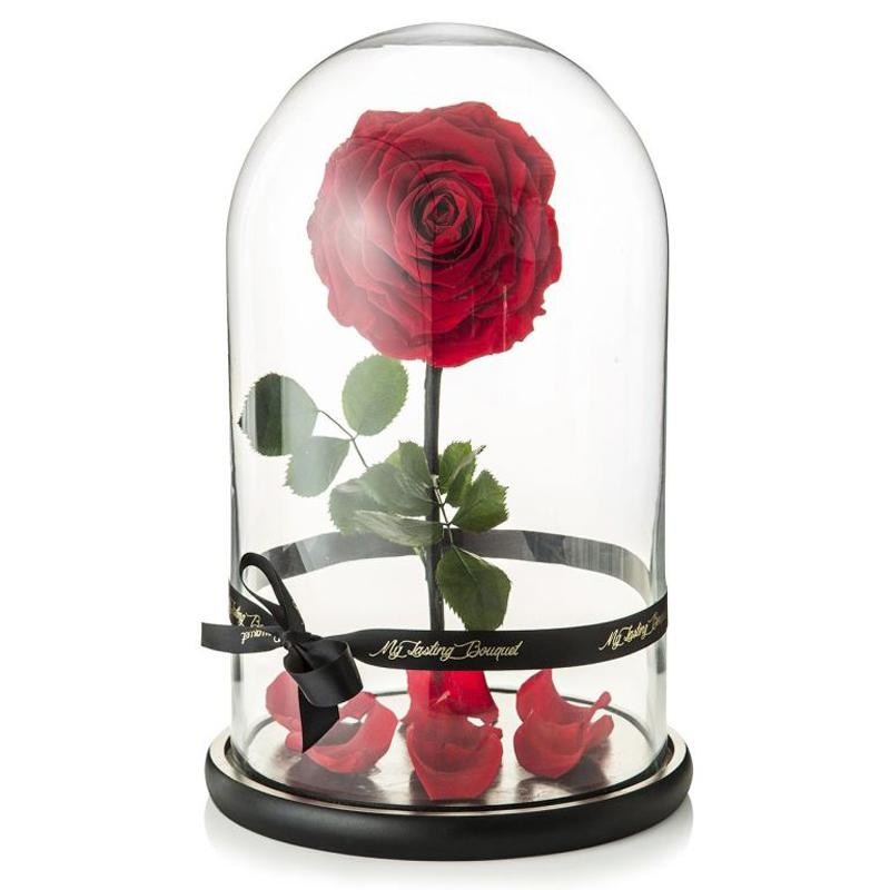 Beautie And Beast Rose Under Glass Dome