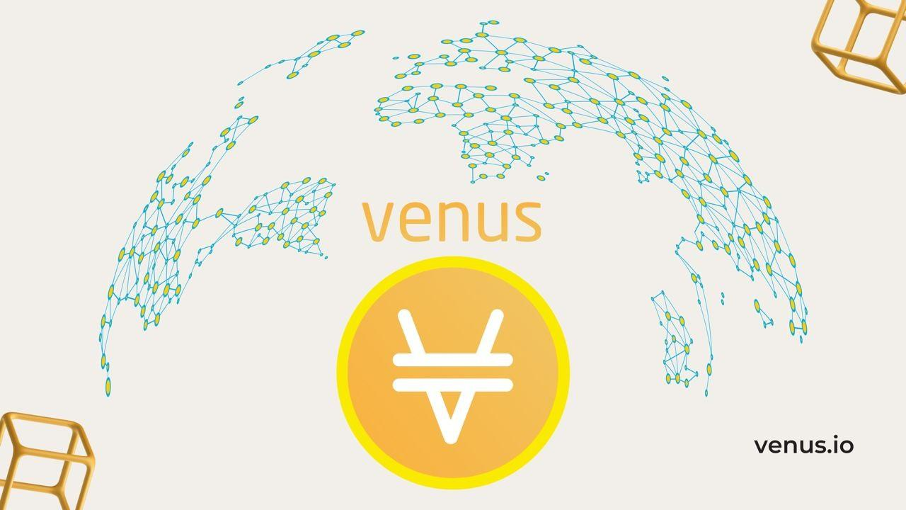 Venus Emerges from a Sea of Crypto Ecosystems