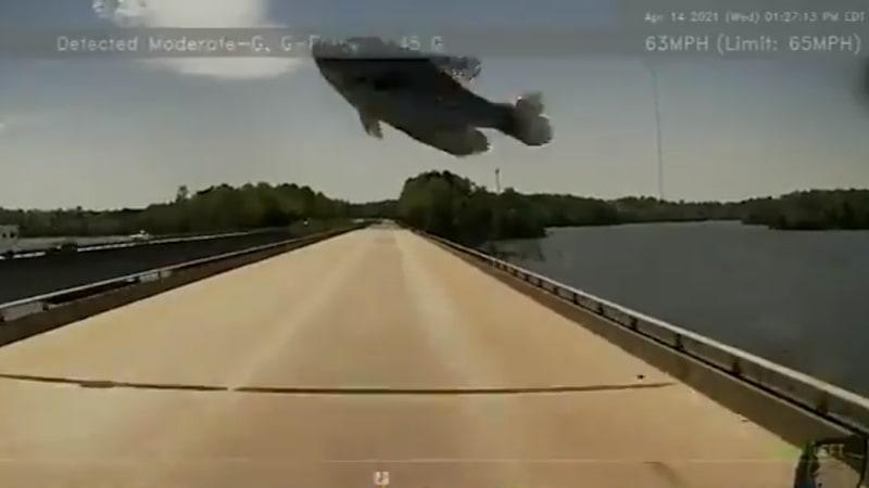 Οδηγός φορτηγού πουλιών με ψάρια