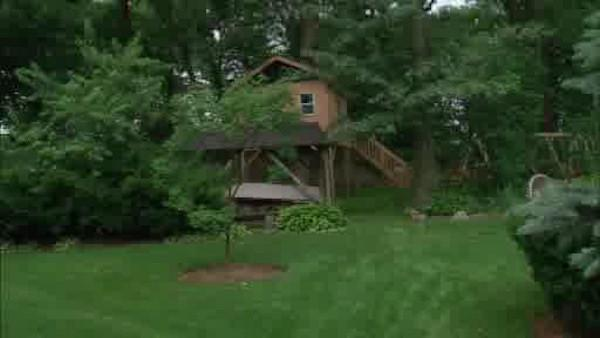 Children's tree house causing controversy for one family