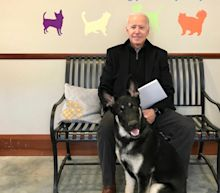 Biden twists his ankle after slipping while playing with his dog