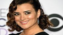 Cote De Pablo's TV Return in 'The Dovekeepers'
