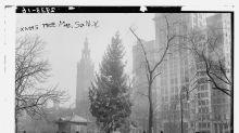 100年前的紐約聖誕節