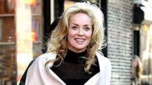 Sharon Stone se sintió excluida de la industria tras su hemorragia cerebral