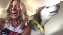 Sounds a Little Husky: Pup Struggles to Hit High Note With Singing Owner
