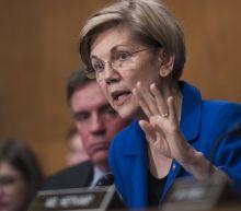 Cherokee Nation Calls Elizabeth Warren's DNA Test 'Inappropriate and Wrong'