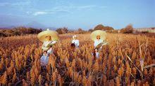 Con sombreros y prendas de piel, el norte de México inspira la moda internacional