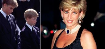 Shock claims about Diana's death