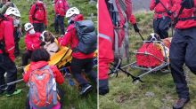 Team's dramatic rescue of huge dog injured at the top of a mountain