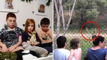 Devastated residents dread cull of beloved kangaroos living amongst them