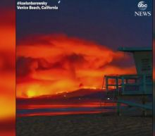 Timelapse footage captures Malibu wildfire as seen from Venice Beach