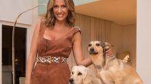 Luisa Mell detona decisão do STF sobre sacrifício de animais em religiões e fala é apontada como racismo