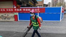 """Coronavirus: habrían identificado en China a la """"paciente cero"""" de la pandemia"""