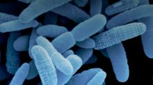 Microbiome biotechs grapple with how to protect their IP