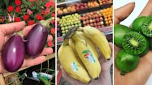 13 Baby Fruit and Veggies That Are Almost Too Cute to Eat
