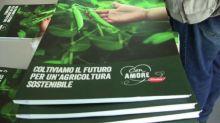 Findus sempre più sostenibile: entro 2019 lo saranno 90% vegetali