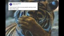 Nagpur Police Spread Coronavirus Awareness on International Tiger Day With Viral Post