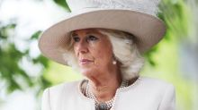 'Reach in' to help victims of domestic violence, urges Duchess of Cornwall