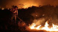 ESPECIAL-Incêndios no Pantanal causam devastação, matam animais e emitem alerta climático