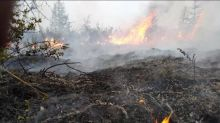 """Sibérie :  la vague de chaleur et les incendies libèrent du méthane qui risque de rendre """"hors de contrôle"""" le changement climatique, alerte un membre du GIEC"""