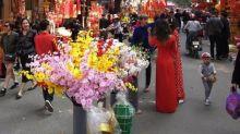 越南的新年
