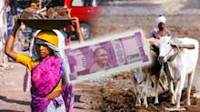 MSP to Middlemen, All That Spelled Death for India's Rural Economy