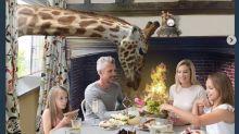 Gb: arriva l'albergo con le giraffe, già 9mila prenotazioni