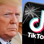 TikTok is at the heart of a wild geopolitical dogfight and it could result in Microsoft buying TikTok. Here's what's going on.