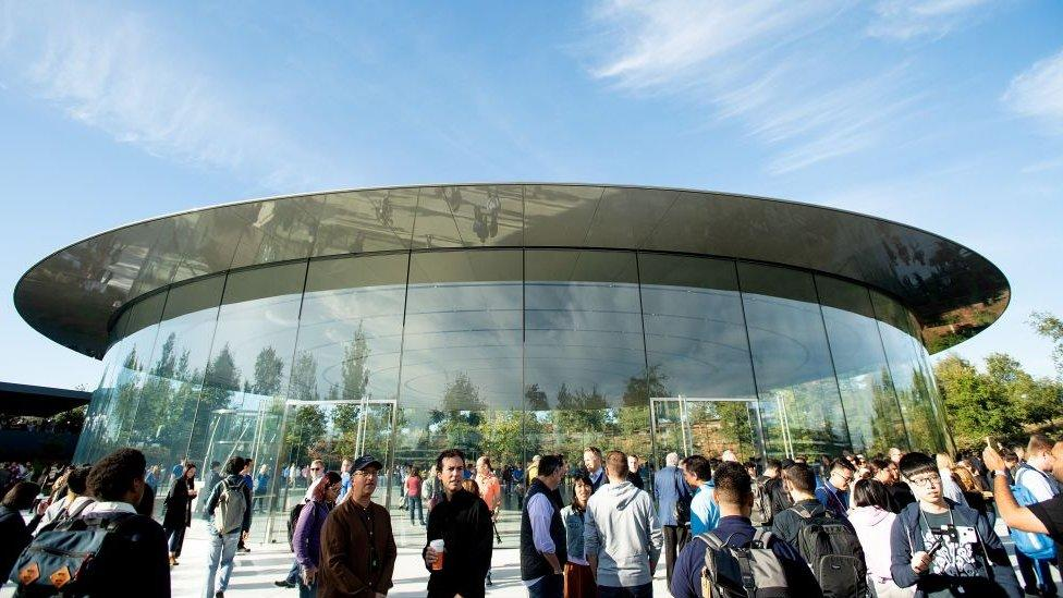 Apple employees rally against office working plan