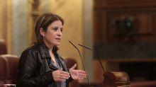 Así es la 'Ley Zerolo' que ha presentado el PSOE