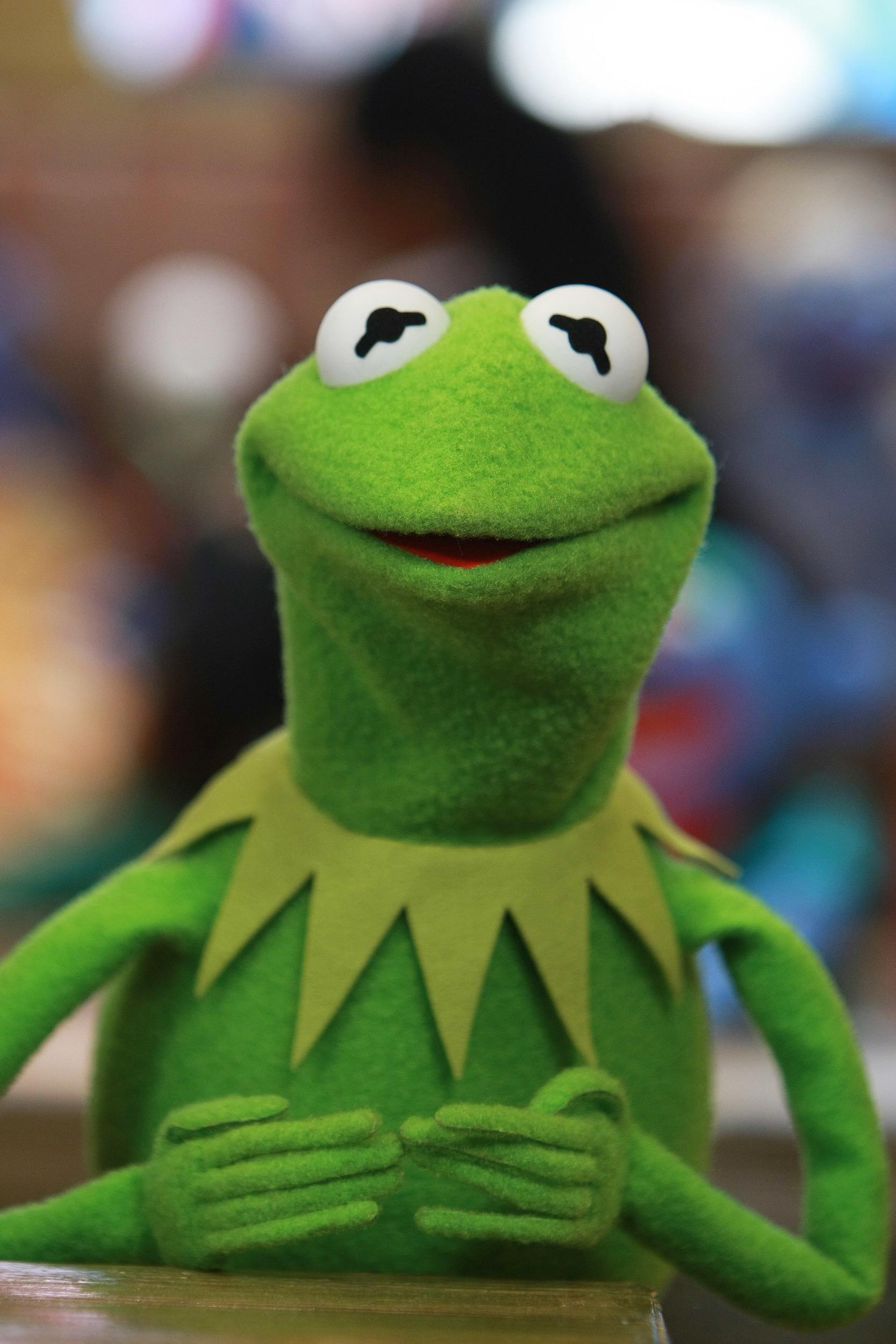 Kermit the Frog appears at the Whatnot Workshop at FAO Schwarz on November 11, 2008 in New York City. (Photo by Neilson Barnard/Getty Images for The Muppets Studio)