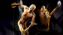 """Real Bodies"", a Roma cadaveri plastinati in pose atletiche"