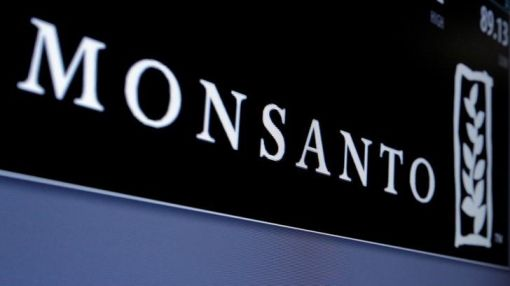 Exclusive - Monsanto pulls new GM cotton seed from India in protest